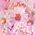 Daisy Sparkles by Debra  Miller