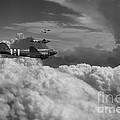 Dakota Air  by J Biggadike