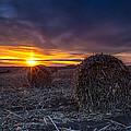 Dakota Sunset by Aaron J Groen