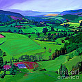 Dales Patchwork by Neil McBride