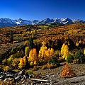 Dallas Divide Fall Colors by Rendell B