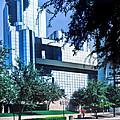 Dallas Glass  by David and Carol Kelly