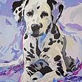 Dalmatian Puppy by Jacki McGovern