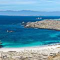 Damas Island Beach by Jess Kraft
