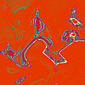 Dance by Bill Owen