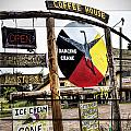 Dancing Crane Coffee In Michigan by Evie Carrier