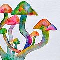 Dancing Cubensis by Beverley Harper Tinsley