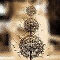 Dandelion Dream by Fei A