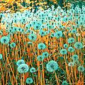Dandelion by Ruslanhoroshko