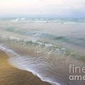 Dania Beach by Glennis Siverson