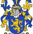 Daniel Coat Of Arms Irish by Heraldry