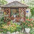 Dans Le Jardin by Lilian F Norris