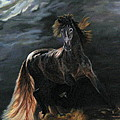 Dappled Horse In Stormy Light by LaVonne Hand