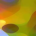 Dappled Light Panoramic 2 by Amy Vangsgard