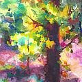 Dappled - Light Through Tree Canopy by Talya Johnson