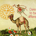Dare To Be Different by Peggy Collins