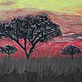 Dark Africa by Paul Fell