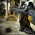 Dark Angel by Wayne Sherriff
