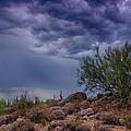 Dark Desert Skies  by Saija  Lehtonen