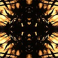 Dark Flame Of Nature by Deprise Brescia