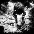 Dark Horse by Christy Bell