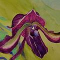 Dark Orchid by Beverley Harper Tinsley