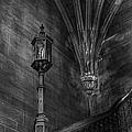 Dark Recesses by Margie Hurwich