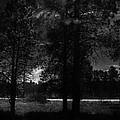 Darkenwalk by D Goodman