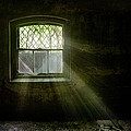 Darkness Revealed - Basement Room Of An Abandoned Asylum by Gary Heller