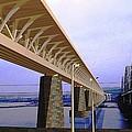 Darnitsky Bridge by Oleg Zavarzin