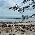 Fannie Bay 1.3 by Cheryl Miller
