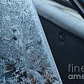 Dashing Through The Frost by Brian Boyle