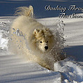 Dashing Through The Snow by Lois Bryan