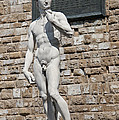 David By Michelangelo by Melany Sarafis