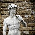 David Statue by Ulisse
