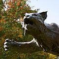 Davidson College Wildcat Statue by Orange Cat Art