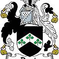 Davis Coat Of Arms Kildare Ireland by Heraldry