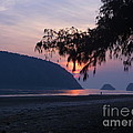 Dawn By The Sea by Pusita Gibbs