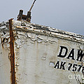 Dawn by David Arment