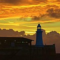 Dawn Departure by Malcolm Snook
