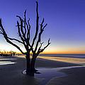 Dawn by Dustin  LeFevre
