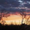 Dawn In The Catskills by Ellen Levinson