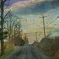 Dawn by Kathy Jennings
