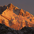Dawn On Kangchenjunga Talung by Colin Monteath
