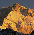 Dawn On Kangchenjunga Talung Face by Colin Monteath