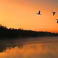 Dawn Patrol by Steven Richardson