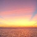 Dawn by Paul Williams