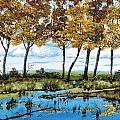 Dawn's Blue Waters Edge  by Michael Dillon