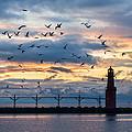 Dawn's Early Flight by Bill Pevlor