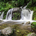 Day 1000 - Lower Forest Glen Falls by Charlie Duncan
